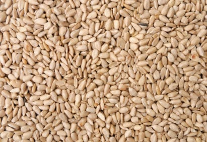 Bakery and Confectionary Sunflower Kernels