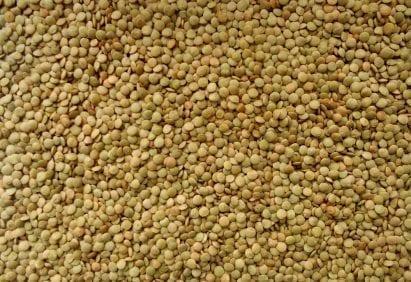 richlea lentils